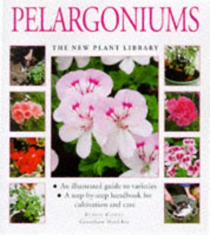 pelargoniums-a-step-by-step-handbook-for-cultivation-and-care-new-plant-library