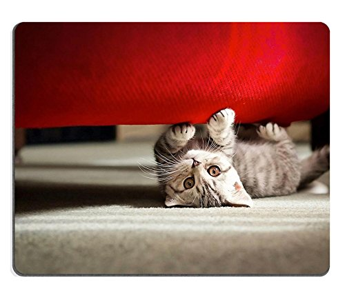 Luxlady Mousepads Adorable playful kitten under sofa IMAGE 21374146 Customized Art Desktop Laptop Gaming mouse Pad