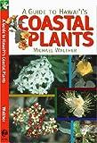 A Guide To Hawaii's Coastal Plants