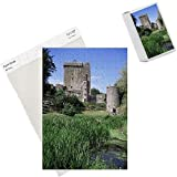 Photo Jigsaw Puzzle of Blarney Castle from Robert Harding