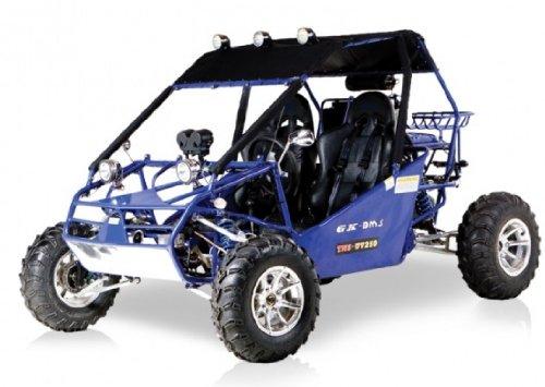 BMS Power Buggy 250 BLUE Gas 4 Stroke 244cc Recreational Buggy Go Kart