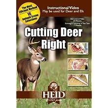 Cutting Deer Right