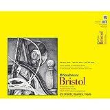 Strathmore 342119 100-Pound 20-Sheet Strathmore Vellum Bristol Paper Pad, 19 by 24-Inch