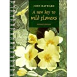 A New Key to Wild Flowersby John Hayward