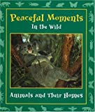 Peaceful Moments in the Wild: Animals and Their Homes (Moments in the Wild series)