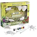 Paint and Play set - Insectsby Wild Republic