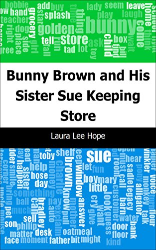 bunny-brown-and-his-sister-sue-keeping-store