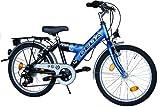 Kinderfahrrad 20 Zoll DELTA Fahrrad Shimano 6 Gang Kettenschaltung StVZO