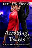 Acquiring Trouble: A Bluegrass Brothers Novel
