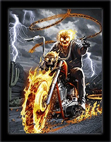 3D Art Flame Biker 3D Framed Art