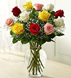 Rose Elegance Premium Long Stem Assorted Roses 12 Stem Assorted Roses by 1-800 Flowers