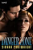 Danger Zone (Hawkeye series Book 1) - Sierra Cartwright