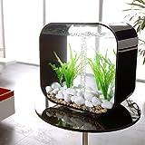BiOrb Life 8-gallon Aquarium - White - Frontgate