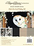 Pollyanna Pickering British Wildlife Card Making Kit, Peek a Boo
