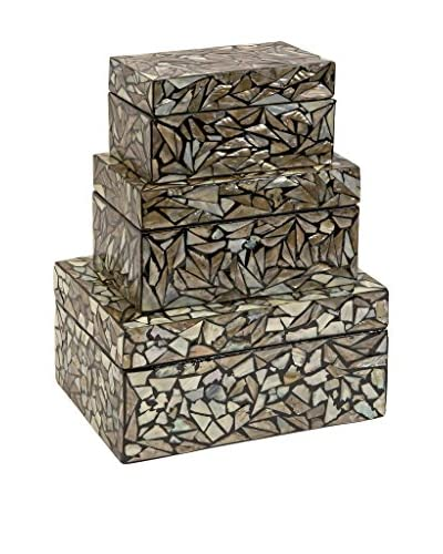 Set of 3 Neal Shell Boxes