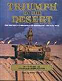 Triumph in the Desert: The Challenge, The Fighting, The Legacy.