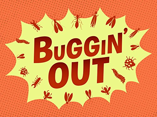 Buggin'Out - Season 1