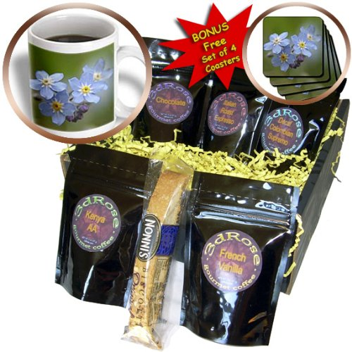 Cgb_46817_1 Taiche - Photography - Forget-Me-Not - Forget -Me -Not - Alzheimers Disease, Forget Me Not, Friendship, Grandparents Day, Love, Myosotis - Coffee Gift Baskets - Coffee Gift Basket