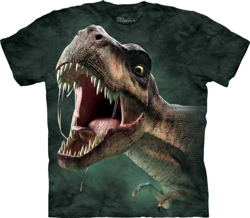 The Mountain T-Rex Roar Child T-Shirt M front-324392