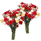 Mini-Carnations Flower Bouquet - Free Fast Shipping - Double Bouquet - 50 Stems