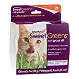 Smarty Kat Sweet Greens Cat Grass Kit, 1 OZ (Pack of 6)