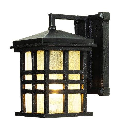 Trans Globe Lighting 4635 BK 1-Light Coach Lantern, Black