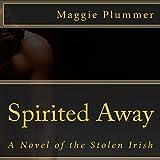 Spirited Away: A Novel of the Stolen Irish