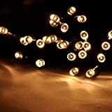 DuaFire 55ft 17m 100 LED Waterproof Solar Powered LED String Light for Outdoor, Gardens, Homes, Christmas Party,patio, porch, lawn, christmas trees, party, wedding (Warm White)