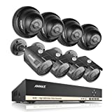 ANNKE 8-Channel HD 1080N Video Security System DVR and (8) HD 960p Indoor/Outdoor 1.3MP Cameras with IP66 Weatherproof Metal Housing