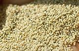 Indian Spice Poppy Seeds 3.5oz-