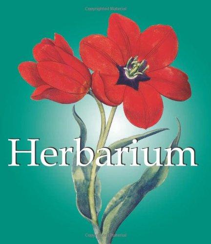 Herbarium (Mega Square) (Herbarium Press compare prices)