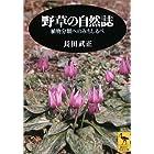 野草の自然誌―植物分類へのみちしるべ (講談社学術文庫)