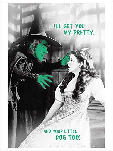 The Wizard of Oz - I'll get You My Pretty (9x12 Collectible Art Print, Wall Decor Travel Poster)