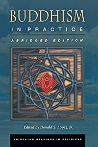Buddhism in Practice (Princeton Readings in Religions) download ebook