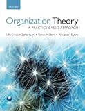 img - for Organization Theory: A Practice Based Approach book / textbook / text book
