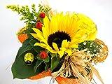 """Blumenstrauß """"Sonnenlicht"""" VERSANDKOSTENFREI"""