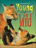 img - for Young and Wild (Wildcats - Cougars) (B13) book / textbook / text book