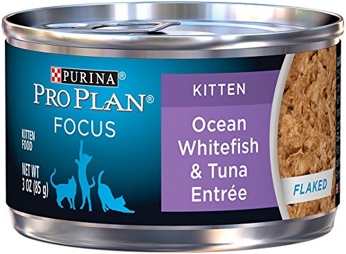 Purina Pro Plan Wet Cat Food, Focus, Kitten Ocean Whitefish and Tuna Entrée, 3-Ounce Can, Pack of  24 (Purina Pro Wet Cat Food compare prices)