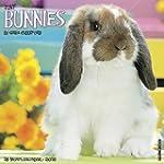 Just Bunnies 2016 Calendar