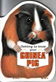 Getting to Know Your Guinea Pig (Children's Pet) (1903098149) by Gill Page