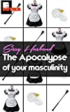 Sissy Husband: The Apocalypse of your Masculinity. (English Edition)