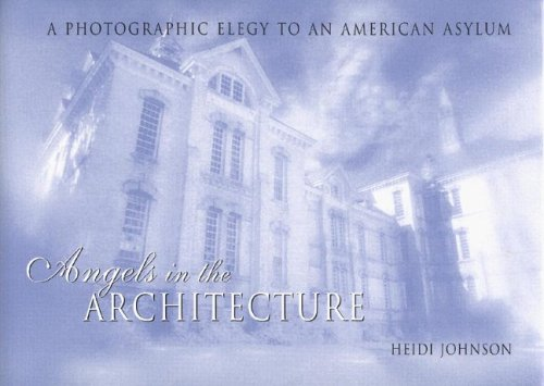 Angels in the Architecture: A Photographic Elegy to an American Asylum (Great Lake Books Series)