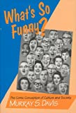 What's so Funny?: The Comic Conception of Culture and Society