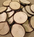 Wood Slices 20 small 15 to 2 in diameter