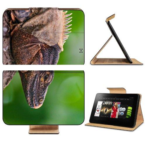 Iguana Lizard Face Color Reptile Amazon Kindle Fire HD 8 9