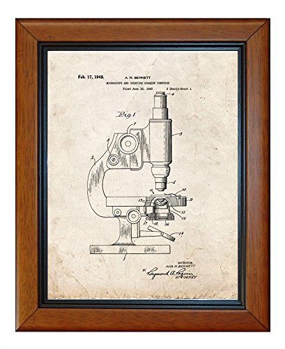 """Microscope And Counting Chamber Patent Art Old Look Print In A Honey Glazed Wood Frame (11"""" X 14"""")"""