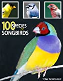 img - for 100 Species of Songbirds: A Picture Book for Bird Watchers and Lovers book / textbook / text book