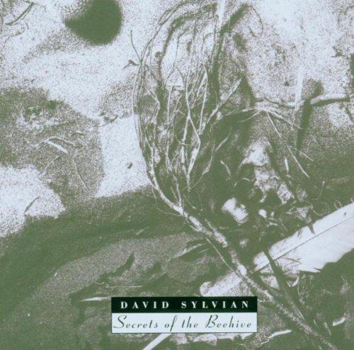 David Sylvian - In Paradise of Shaman - Lyrics2You