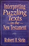 Interpreting Puzzling Texts in the New Testament (0801021022) by Stein, Robert H.