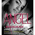 Angel: Maximum Ride, Book 7